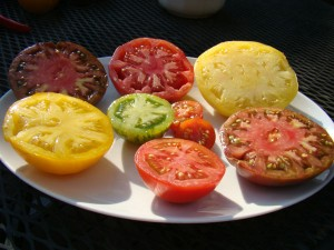 tomatoes-plate