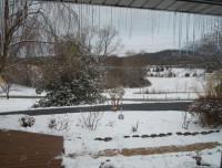 snow-3-17
