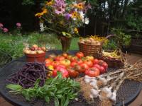 table-produce