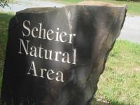 Scheier-sign