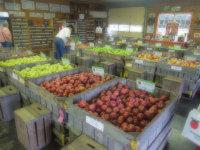 rain-apples