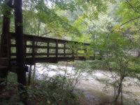 rain-bridge
